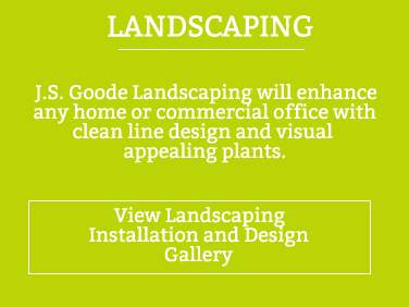 Landscaping Installation and Design Details